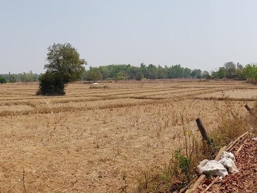 droge landschap in thailand