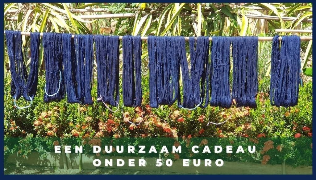 een duurzaam cadeau onder 50 euro